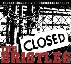 BRISTLES - REFLECTIONS OF THE BOURGEOIS SOCIETY