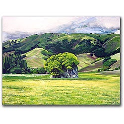 Colleen Proppe 'Spirit Rock' Gallery-wrapped Canvas Art - Thumbnail 0