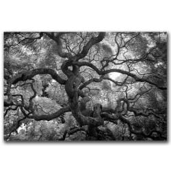 CATeyes 'Motivations' Gallery-wrapped Canvas Art