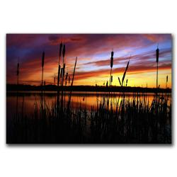 CATeyes 'Principles' Gallery-wrapped Canvas Art - Thumbnail 1