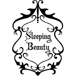 Design on Style 'Sleeping Beauty' Vinyl Wall Art Quote