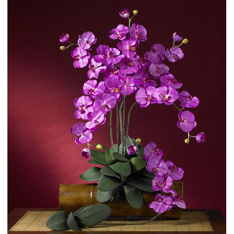 "Silk 31.5-inch Phalaenopsis Orchids (Set of 12) - 31.5""H x 8.5""W x 3""D"