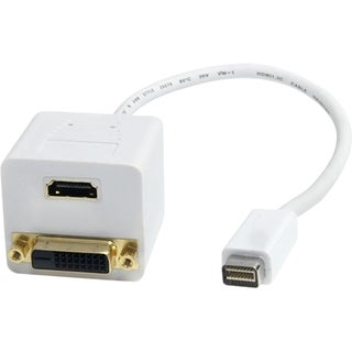 StarTech.com 1 ft Mini DVI to DVI-D & HDMI Splitter Cable - M/F