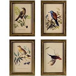 Set of 4 Regent Colorful Framed Bird Drawings