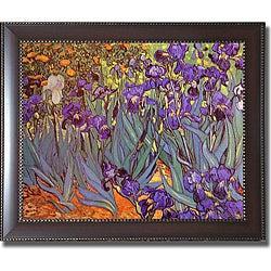 Vincent Van Gogh 'Iris Garden' Framed Canvas Art