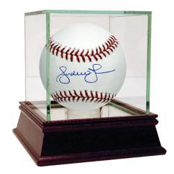 Steiner Sports Autographed Andruw Jones MLB Baseball