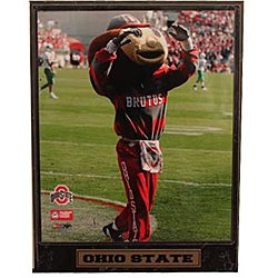 Ohio State University Mascot Plaque