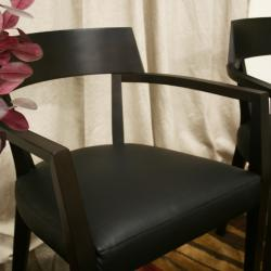 Laine Wenge Wood/ Faux Leather Modern Dining Chairs (Set of 2) - Thumbnail 1