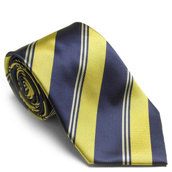 Platinum Ties Men's 'Blue Cougars' Tie