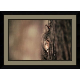 Jim Brandenburg 'Grey Wolf' Framed Art Print