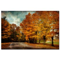 Lois Bryan 'Autumn Scene' Canvas Art