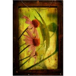 Antiqued Cone Flowers by Lois Bryan 16x24 Canvas Art