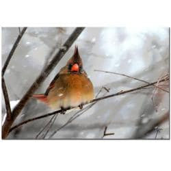 Lois Bryan 'What the..?' Gallery-Wrapped Canvas Art - Thumbnail 1