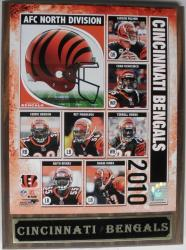 Cincinnati Bengals 2010 Collectible Photo Plaque - Thumbnail 1