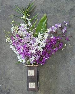 Dendrobium Orchids (12 Stems)|https://ak1.ostkcdn.com/images/products/53125/Dendrobium-Orchids-12-Stems-P918080.jpg?_ostk_perf_=percv&impolicy=medium