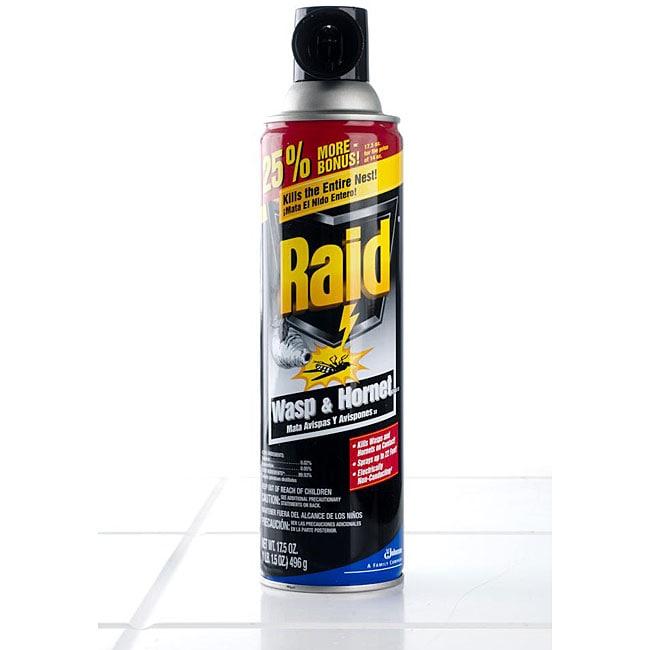 Raid Wasp & Hornet Killer 17.5 oz (Pack of 4)