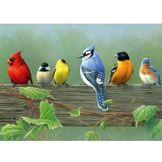 Reeves Artist Collection 'Rail Birds' Paint by Number