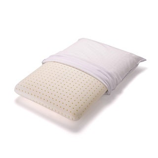 Authentic Comfort Ventilated Memory Foam Pillow (1 or 2-Pack)