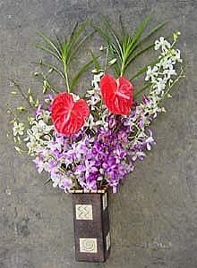 Dendrobium Orchid/ Anthurium Assortment (12 Stems)