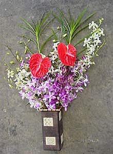 Dendrobium Orchid/ Anthurium Assortment (12 Stems)|https://ak1.ostkcdn.com/images/products/53858/Dendrobium-Orchid-Anthurium-Assortment-12-Stems-P918288.jpg?impolicy=medium