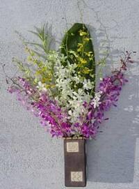 Dendrobium/ Oncidium Orchid Assortment (12 Stems)