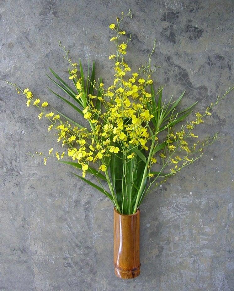 6 Stems Oncidium Orchids