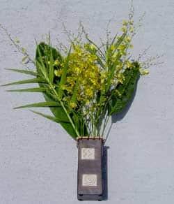 6 Stems Oncidium Orchids|https://ak1.ostkcdn.com/images/products/53994/6-Stems-Oncidium-Orchids-P918307.jpg?impolicy=medium
