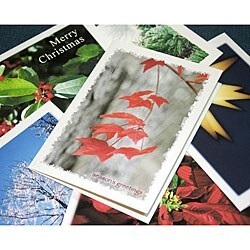 Orange Cat Art Handmade 6-piece Holiday Card Sampler