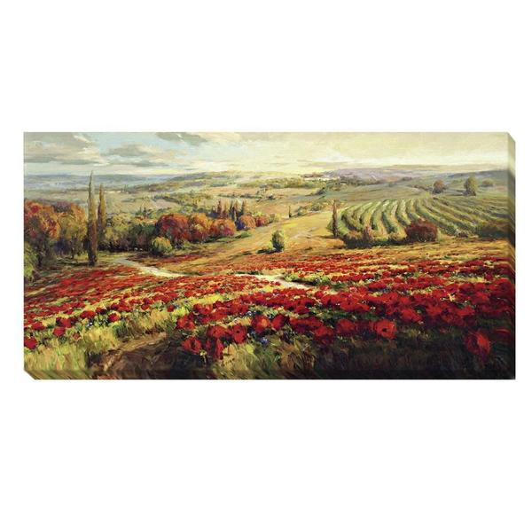 Roberto Lombardi 'Red Poppy Panorama' Canvas Art