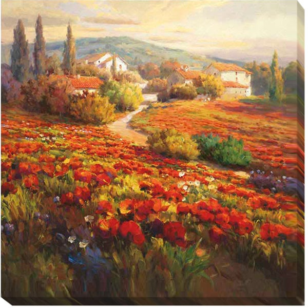 Roberto Lombardi 'Poppy Fields' Canvas Art