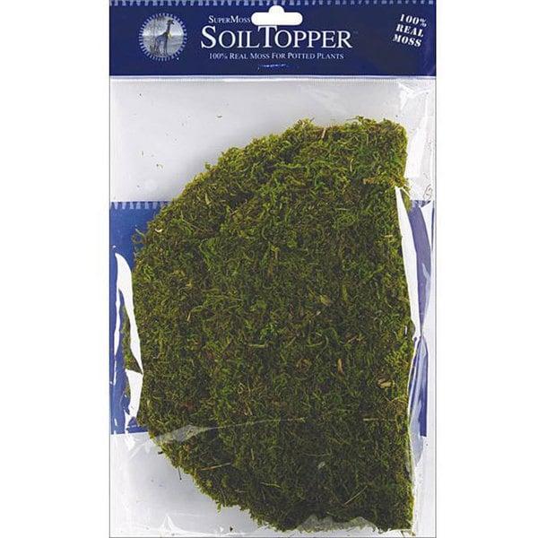 SuperMoss Green Moss Pot Toppers