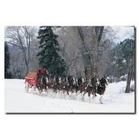 'Clydesdales - Snowing in Forest' Canvas Art