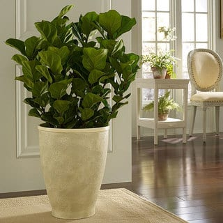 Buy Planters Amp Plant Stands Online At Overstock Com Our