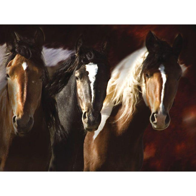 Bobby Goodrich 'Compadres' Gallery-Wrapped Animal Canvas Art