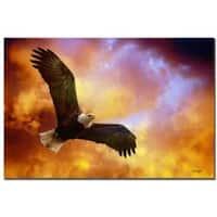 Lois Bryan 'Flight of the Eagle' Canvas Art