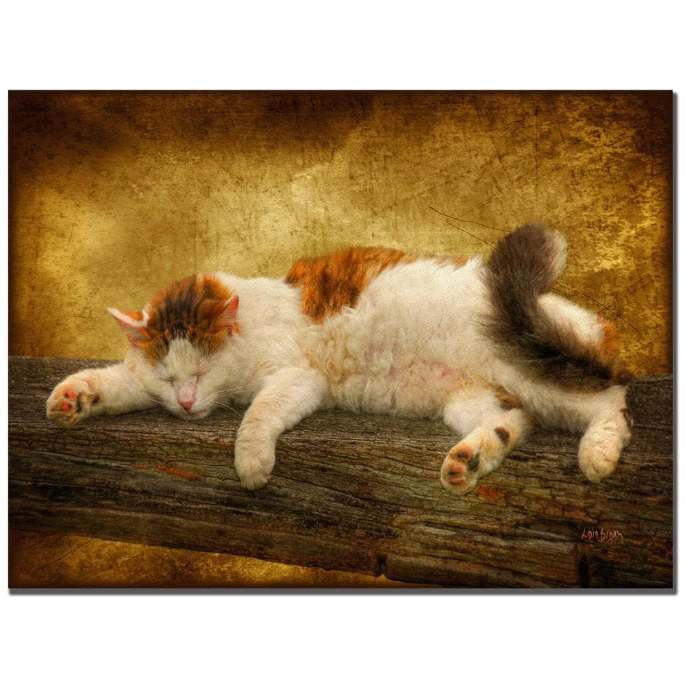 Lois Bryan 'Sleeping Kitty'' Canvas Art