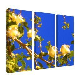 Amy Vangsgard 'Flowering Tree I' 3-panel Art Set