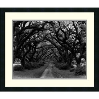 Framed Art Print 'Path in the Oaks #2, Louisiana' by Monte Nagler 26 x 22-inch