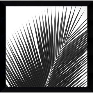 Jamie Kingham 'Palms 14 (detail) ' Framed Art Print