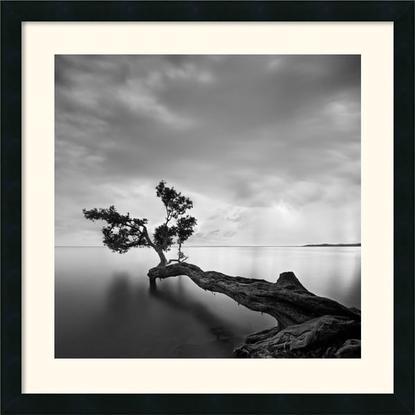 Moises Levy 'Water Tree' Framed Art Print