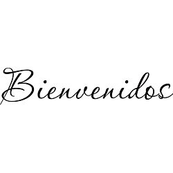 Design on Style 'Bienvenidos' Vinyl Art Quote