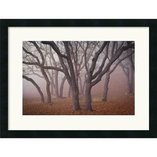 Framed Art Print 'Pilot Road Trees' by David Lorenz Winston 25 x 19-inch