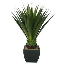 Laura Ashley 43-inch Artificial Aloe Plant
