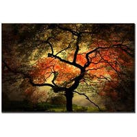 Philippe Sainte-Laudy 'Japanese' Gallery-Wrapped Canvas Art