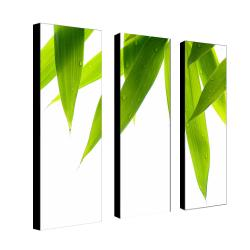Philippe Sainte-Laudy 'Life is Green' 3-panel Art Set