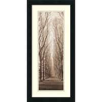 Framed Art Print 'Poplar Trees' by Alan Blaustein 13 x 26-inch