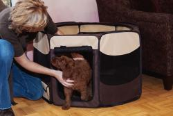 Pet Gear Small Octagon Pet Pen (Option: Tan)