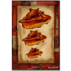 Miguel Paredes 'Conch Shells' Canvas Art - Thumbnail 1