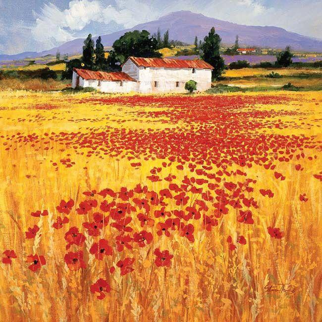 Steve Thoms 'Poppies' Gallery-wrapped Canvas Art
