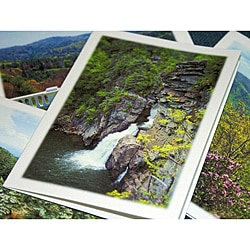 Orange Cat Art 'Blue Ridge Parkway Collection' Note Cards (Set of 4)